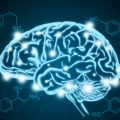 The effect of gambling addiction on the brain