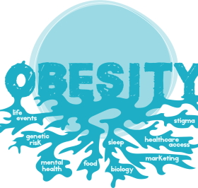 getting attracted to obesity